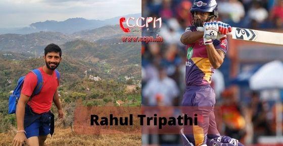 How to contact Rahul Tripathi