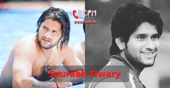 How to contact Saurabh Tiwary