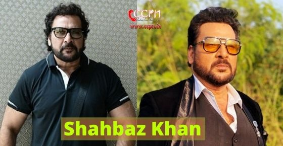 How to contact Shahbaz Khan?
