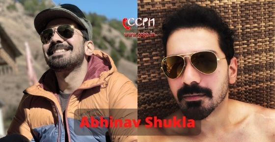 How to contact Abhinav Shukla