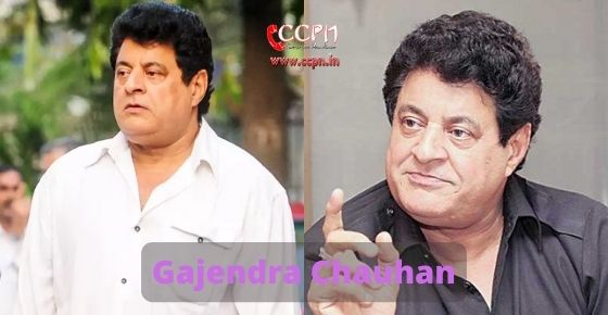 How to contact Gajendra Chauhan