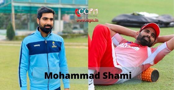 How to contact Mohammad Shami