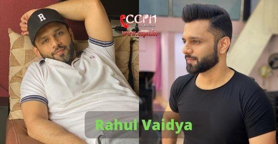 How to contact Rahul Vaidya