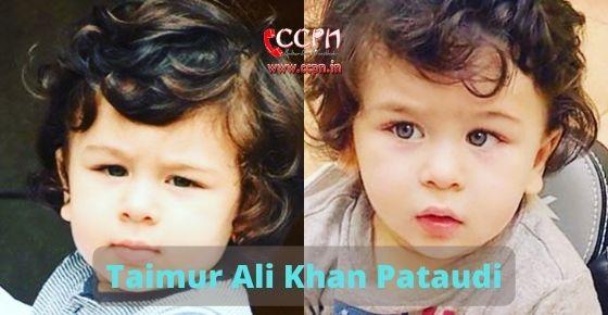 How to contact Taimur Ali Khan Pataudi