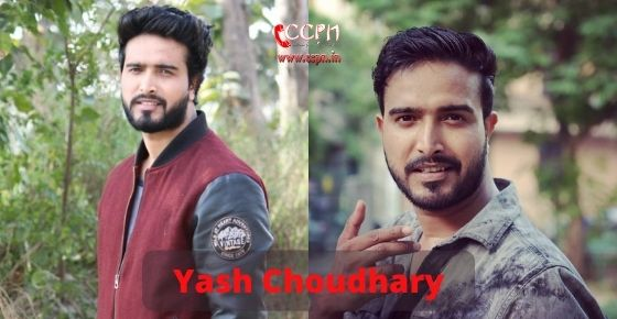 How to contact Yash Choudhary