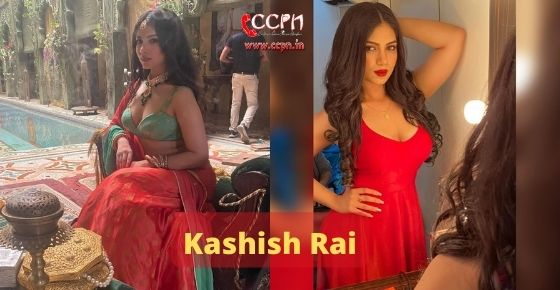 How to contact Kashish Rai