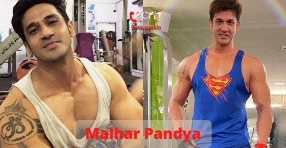 How to contact Malhar Pandya