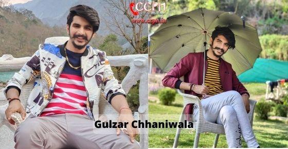 How to contact Gulzaar Chhaniwala