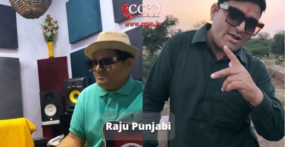 How to contact Raju Panjabi