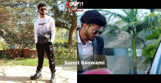 How to contact Sumit Goswami