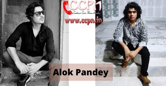 How to contact Alok-Pandey