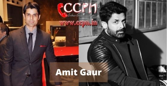How to contact Amit Gaur