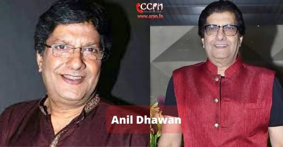 How to contact Anil Dhawan