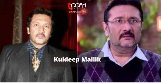 How to contact Kuldeep-Mallik