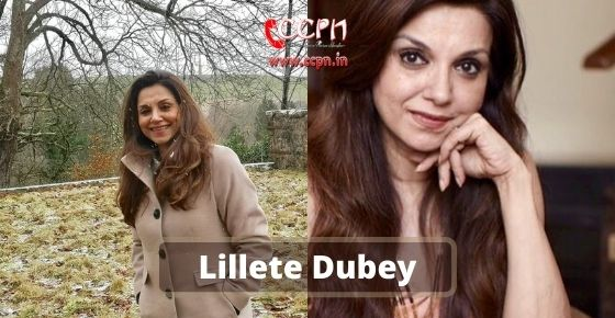 How to contact Lillete-Dubey