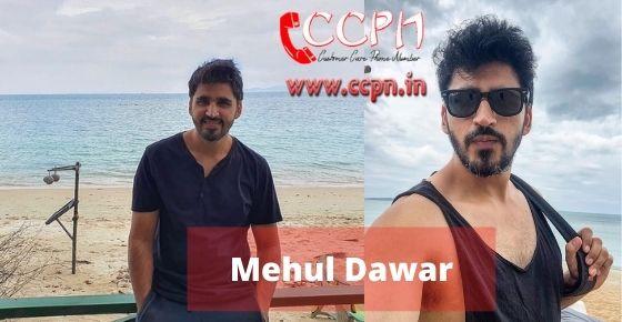 How to contact Mehul-Dawar