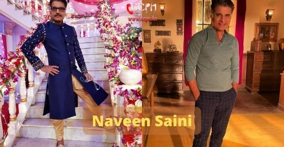 How to contact Naveen-Saini