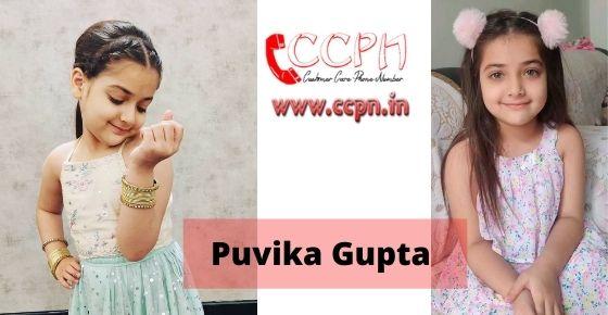How to contact Puvika Gupta