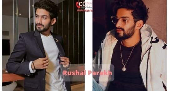 How to contact Rushal Parakh
