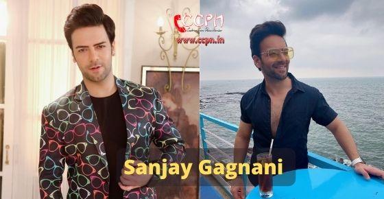 How to contact Sanjay Gagnani