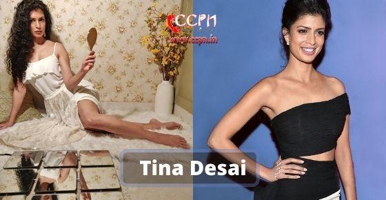 How to contact Tina-Desai
