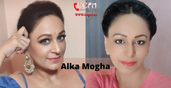How to contact Alka-Mogha