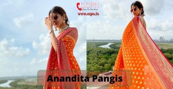 How to contact Anandita-Pangis