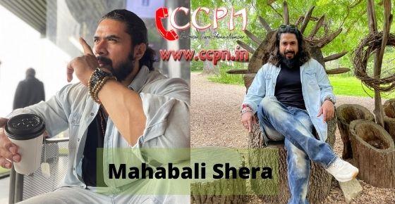 How to contact Mahabali-Shera