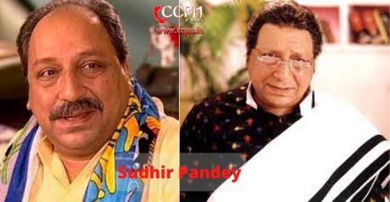 How to contact Sudhir Pandey