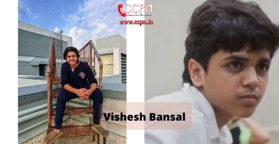 How to contact Vishesh Bansal