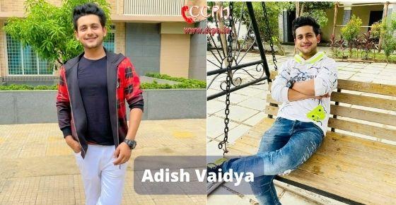 How to contact Adish Vaidya