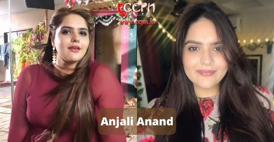How to contact Anjali Anand