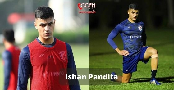How to contact Ishan Pandita