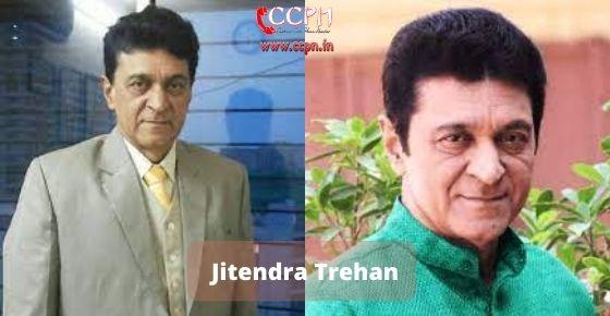 How to contact Jitendra Trehan