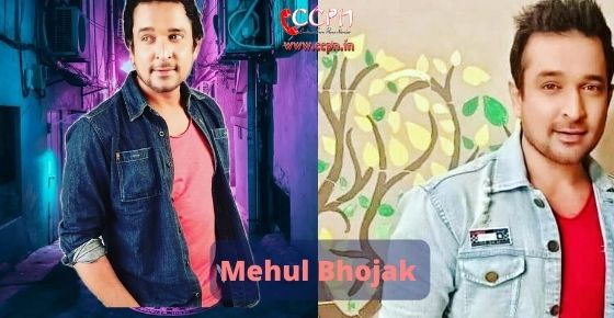 How to contact Mehul Bhojak