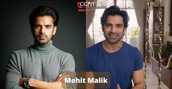 How to contact Mohit Malik