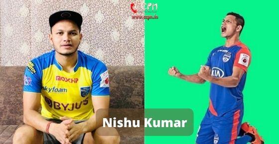 How to contact Nishu Kumar