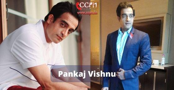 How to contact Pankaj Vishnu