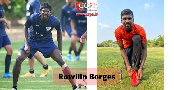 How to contact Rowllin Borges