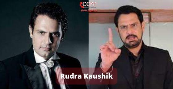 How to contact Rudra Kaushik