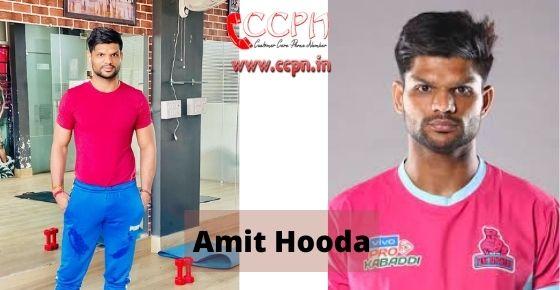 How to contact Amit-Hooda
