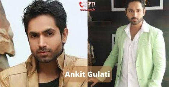 How to contact Ankit Gulati