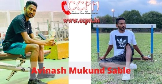 How to contact Avinash-Mukund-Sable