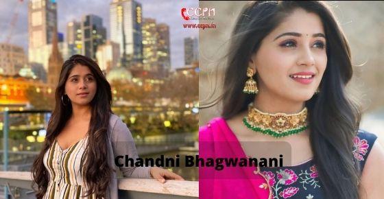 How to contact Chandni Bhagwanani