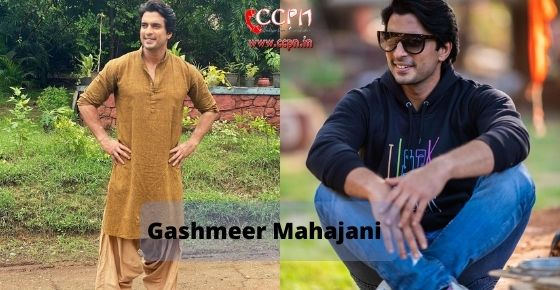 How to contact Gashmeer Mahajani