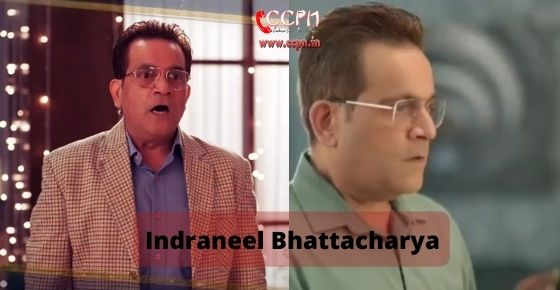 How to contact Indraneel Bhattacharya