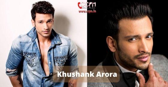 How to contact Khushank Arora