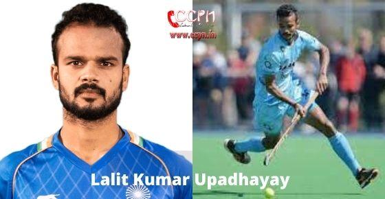 How to contact Lalit Kumar Upadhyay