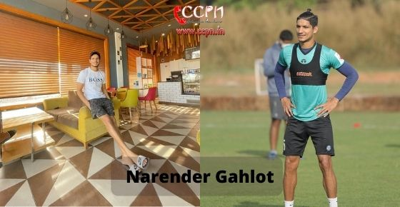 How to contact Narender Gahlot