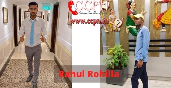 How to contact Rahul-Rohilla